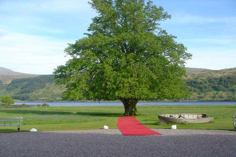 Stunning Red Carpet setting